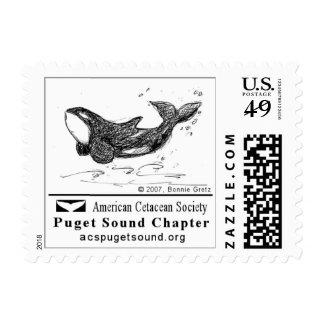 Playful Killer Whale Postage Stamp