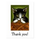 Playful kitten thank you postcards