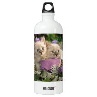 Playful Kittens Peep Out Of A Picnic Basket Water Bottle