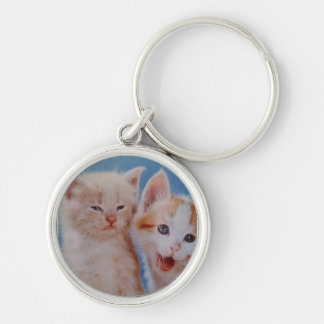 playful kittens Silver-Colored round keychain