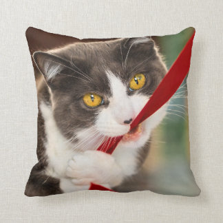 Playful kittie throw pillow