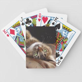 Playful Kitty Card Deck