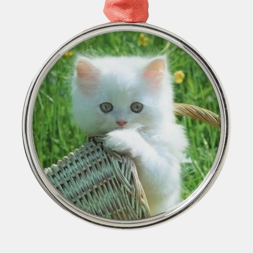 Playful Kitty - Ornament