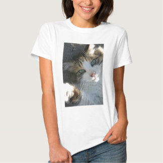 Playful Kitty Tee Shirt