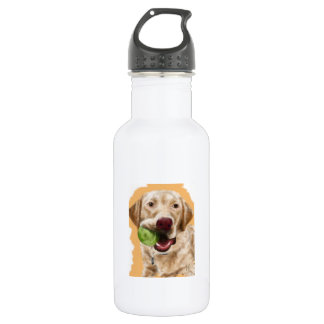 Playful Lab Stainless Steel Water Bottle