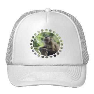 Playful Monkey  Baseball Hat