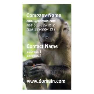 Playful Monkey Business Cards