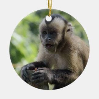 Playful Monkey Ornament