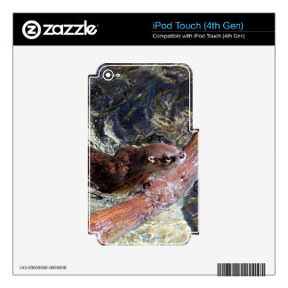 Playful Otter Decals For iPod Touch 4G