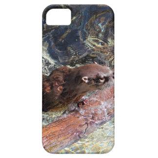 Playful Otter iPhone SE/5/5s Case