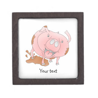 Playful pig in mud gift box