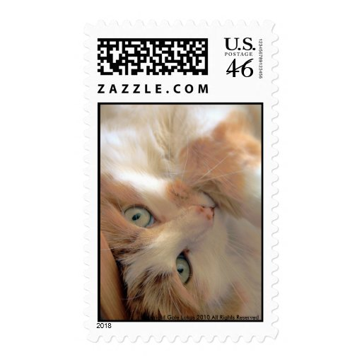 Playful Postage Stamps