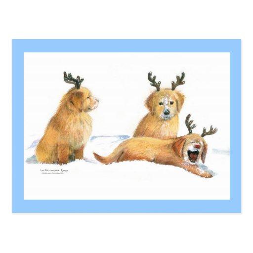 Playful Puppies Christmas Postcard