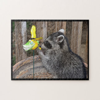 Playful Raccoon Puzzle
