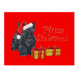 Playful Scottie Christmas Post Cards