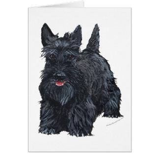 Playful Scottish Terrier Greeting Card