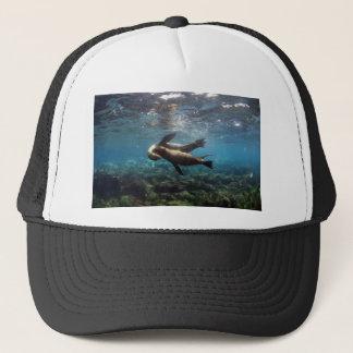 Playful sea lions Galapagos Islands Trucker Hat