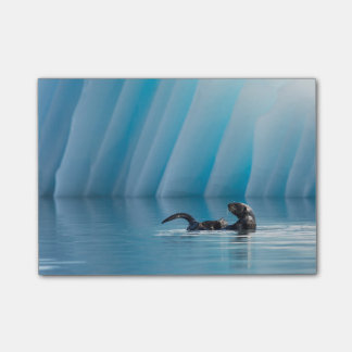 Playful Sea Otter Post-it® Notes