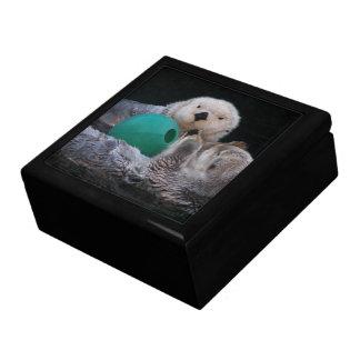 Playful Sea Otters Photo Jewelry Box
