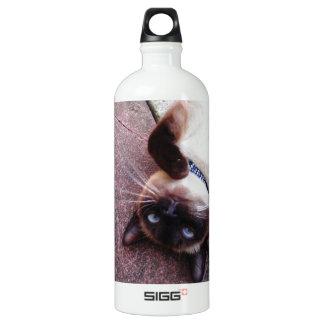 Playful Siamese Aluminum Water Bottle