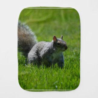 Playful Squirrel Baby Burp Cloths
