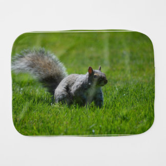 Playful Squirrel Burp Cloths