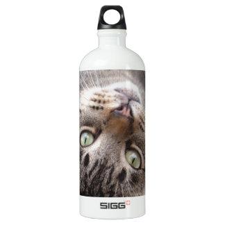 Playful Striped Feral Tabby Cat Aluminum Water Bottle