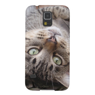 Playful Striped Feral Tabby Cat Case For Galaxy S5
