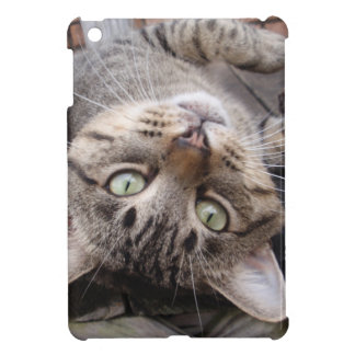 Playful Striped Feral Tabby Cat iPad Mini Case