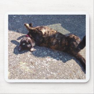 Playful Tortoiseshell Cat Mouse Pad