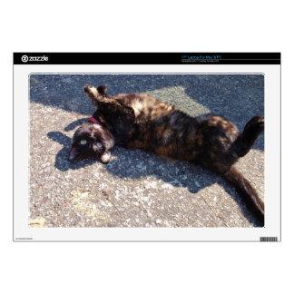 "Playful Tortoiseshell Cat 17"" Laptop Decal"