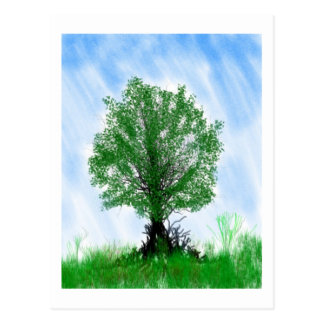 Playful tree blue sky drawing computer graphic postcard