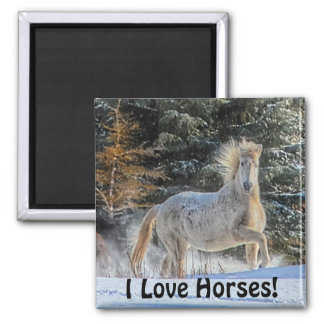 Playful White Horse in Winter Snows Photo Magnet