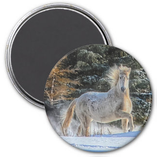 Playful White Horse in Winter Snows Photo Fridge Magnet