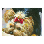 Playful Yorkshire Terrier Large Business Cards (Pack Of 100)