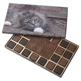 Playfull Tabby Cat Christmas Chocolates