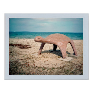 Playground Turtle Poster