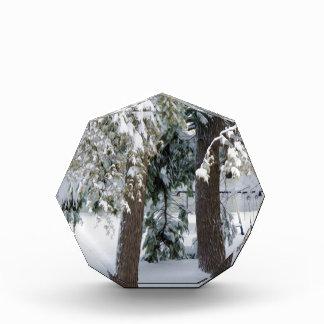 Playground under snow acrylic award