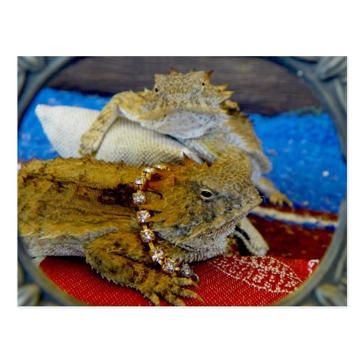playing around with the lizards as I watered Postcard