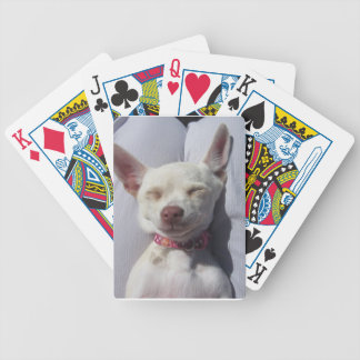 playing card canine white chi dog puppy