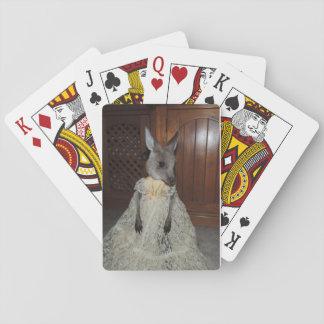 playing cards baby kangaroo