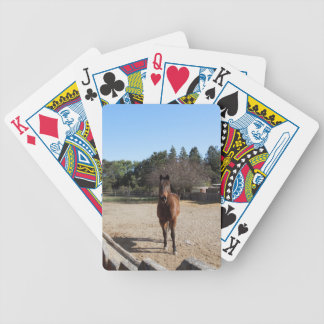 Playing Cards : Brown Horse in Los Alamos