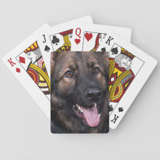 Playing cards German Shepherd Dog Alsatian