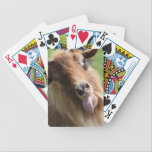 """Playing Cards  &quot;Goat Face&quot; Themed<br><div class=""""desc"""">Our goat Diesel,   is quite a character,   this photo is very self explainable.  LOL !  &#128514;</div>"""