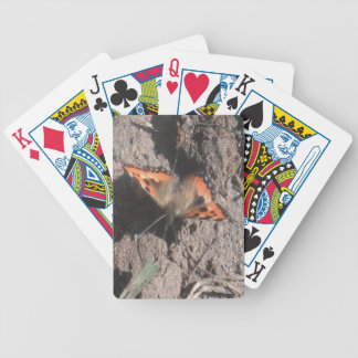 Playing Cards Hairy Butterfly Dirt Foraging