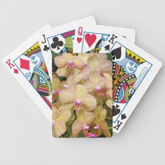 Playing Cards - Moth Orchid