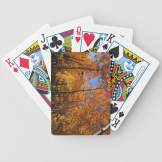 Playing Cards: Orange Aspen Trees Bicycle Playing Cards