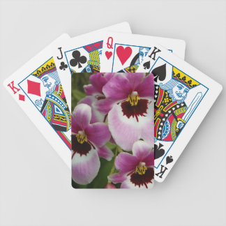 Playing Cards - Pansy Orchid
