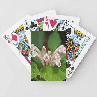 Playing Cards - Pink Skullcap