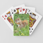 "Playing Cards, Red Squirrel Theme Playing Cards<br><div class=""desc"">This little red squirrel,  was just waiting to have his picture taken. so beautiful.</div>"
